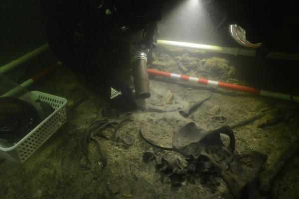Remains of medieval soldier found at bottom of Lithuanian lake